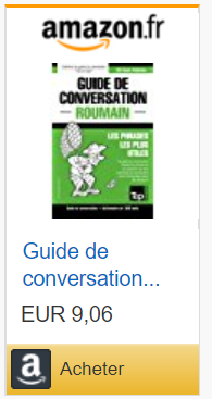 guide de conversation roumain